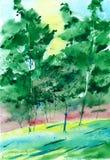 Árboles pintados Fotografía de archivo