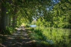 Árboles planos al borde de Canal du Midi en el sur de Francia imagen de archivo