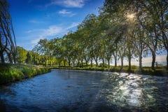 Árboles planos al borde de Canal du Midi en el sur de Francia fotografía de archivo libre de regalías