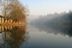 Árboles por el río Imagen de archivo