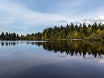 Árboles por la orilla del lago que refleja en la laguna perdida en el parque de Stanley en Vancouver Imagenes de archivo