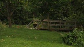 Árboles, puente de madera y campo verde en el parque metrajes