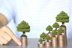 Árboles que crecen en el dinero de las monedas, la inversión y el concepto del negocio imagen de archivo libre de regalías