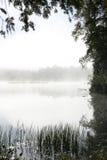 Árboles que enmarcan la niebla de la madrugada en un lago Imagen de archivo libre de regalías