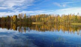 Árboles que reflejan en el agua en la mañana del otoño Fotografía de archivo libre de regalías