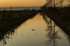 Árboles que reflejan en el agua en la puesta del sol Fotos de archivo