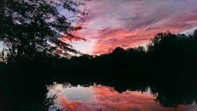 Árboles que reflejan en un lago en la puesta del sol Foto de archivo