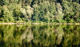 Árboles que reflejan sobre el río Foto de archivo libre de regalías