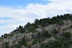 Árboles rocosos Imagen de archivo