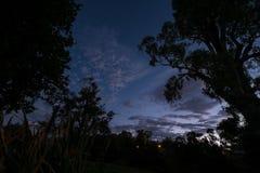 Árboles silueteados contra una puesta del sol Imagen de archivo libre de regalías