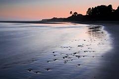 Árboles silueteados en una playa en la puesta del sol Imágenes de archivo libres de regalías