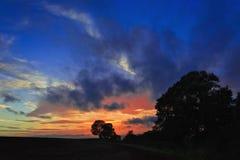 Árboles silueteados por puesta del sol nublada Fotos de archivo libres de regalías