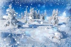 Árboles sitiados por la nieve, fondo del paisaje del invierno del bokeh con el snowflak Fotografía de archivo libre de regalías