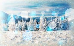 Árboles sitiados por la nieve, fondo del paisaje del invierno del bokeh con el snowflak Imágenes de archivo libres de regalías