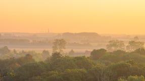 Árboles teniendo en cuenta salida del sol Imagenes de archivo