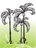 Árboles tropicales del vector Fotos de archivo libres de regalías
