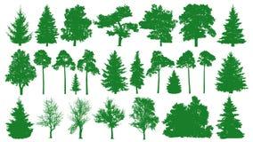 Árboles verdes fijados Fondo blanco Silueta de un abeto conífero del bosque, abeto, pino, abedul, roble, arbusto, rama stock de ilustración