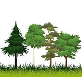 Árboles y arbustos libre illustration