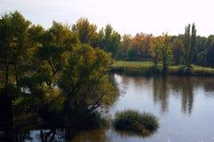 Árboles y arbustos en jardín del lago de Forest Park Foto de archivo libre de regalías
