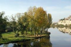 Árboles y arbustos en jardín del lago de Forest Park Imagen de archivo