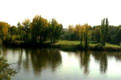 Árboles y arbustos en jardín del lago de Forest Park Imagen de archivo libre de regalías