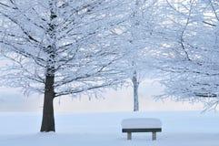 Árboles y banco de parque helados Fotos de archivo