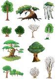 Árboles y bosque fotos de archivo