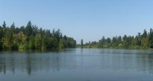 Árboles y brisa reflejados en el lago Fotografía de archivo libre de regalías