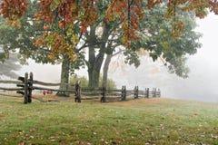 Árboles y cerca brumosos del otoño imagen de archivo