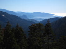 Árboles y cielo de las montañas Fotografía de archivo libre de regalías