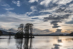 Árboles y Crannog de Mallachie del lago en montañas escocesas, Imagen de archivo