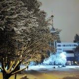 Árboles y edificio nevados Fotografía de archivo libre de regalías