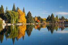Árboles y edificios reflejados en el lago Imagen de archivo libre de regalías