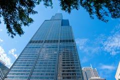 Árboles y el Sears Tower Fotografía de archivo