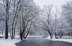 Árboles y lago congelado Fotos de archivo libres de regalías