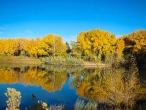 Árboles y lago del otoño Imagenes de archivo