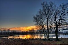 Árboles y lago en la salida del sol Imagenes de archivo