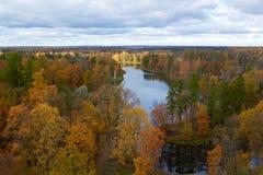 Árboles y lago. Parque de Gatchina. St Petersburg Imagen de archivo