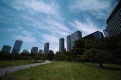 Árboles y metrópoli foto de archivo libre de regalías