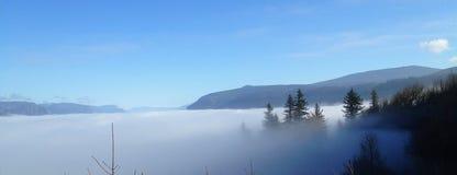 Árboles y montaña que enarbolan a través de la niebla en Portland, Oregon fotografía de archivo