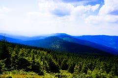 Árboles y montañas imagen de archivo