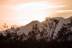 Árboles y montañas fotos de archivo