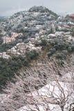 Árboles y montañas blancos imagen de archivo
