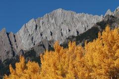 Árboles y montañas de álamo del otoño Fotos de archivo libres de regalías