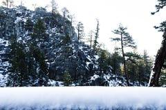Árboles y nieve de Cliff Of Rock With Scattered Imágenes de archivo libres de regalías