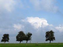 Árboles y nubes Imagenes de archivo