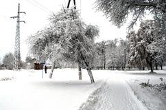 Árboles y pilares cubiertos con nieve foto de archivo libre de regalías