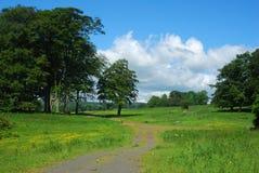Árboles y prados cerca del castillo de Alnwick imagen de archivo libre de regalías