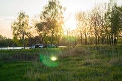 Árboles y puesta del sol en campo Foto de archivo