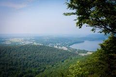 Árboles y puesto de observación de los ríos Imagen de archivo libre de regalías